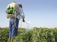 Impacts of Pesticides on Invertebrates