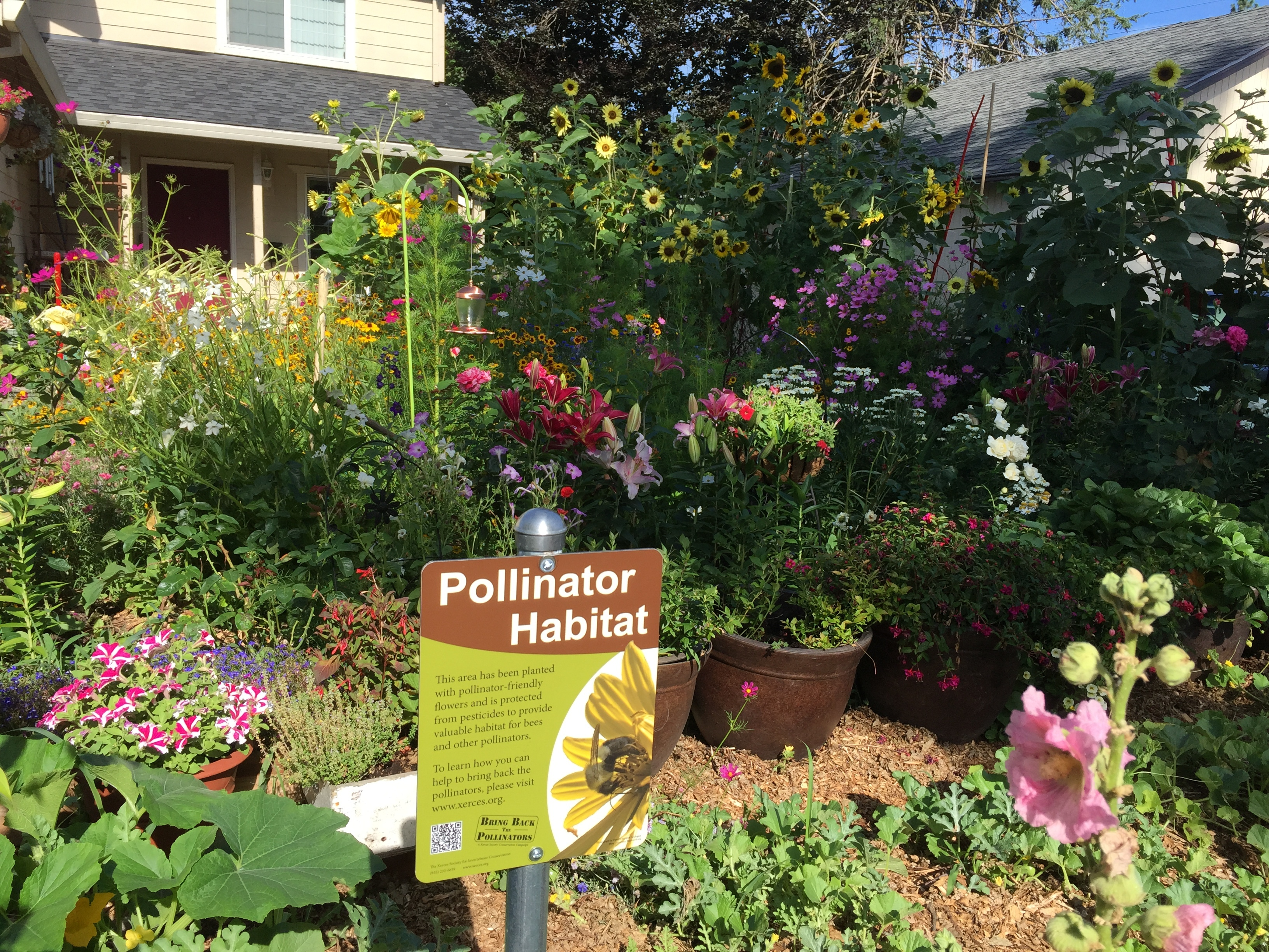 A beautiful, colorful garden is bursting with a variety of blooms. In the foreground is a Xerces Society pollinator habitat sign.