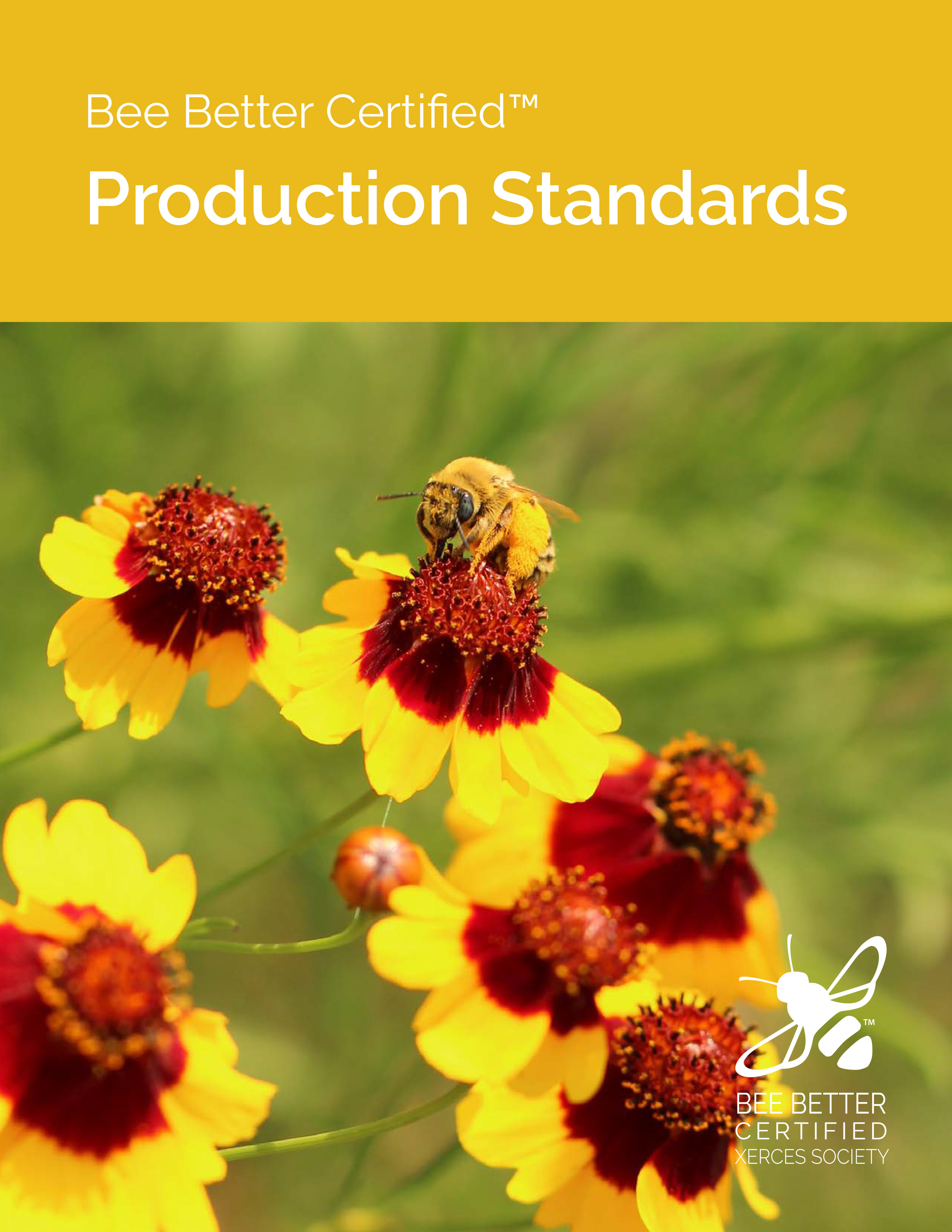 The Bee Better Certified Production Standards' cover image, with a bright photo of yellow and red blossoms visited by a bumble bee, is shown.