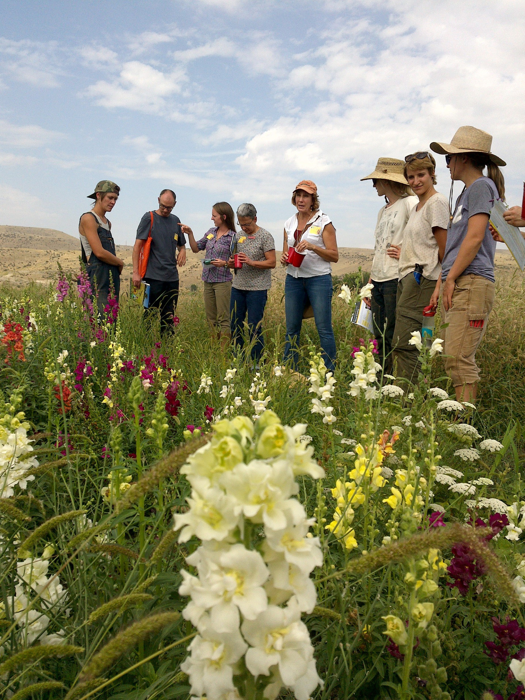 A group of people gathers around a colorful planting of assorted flowers.