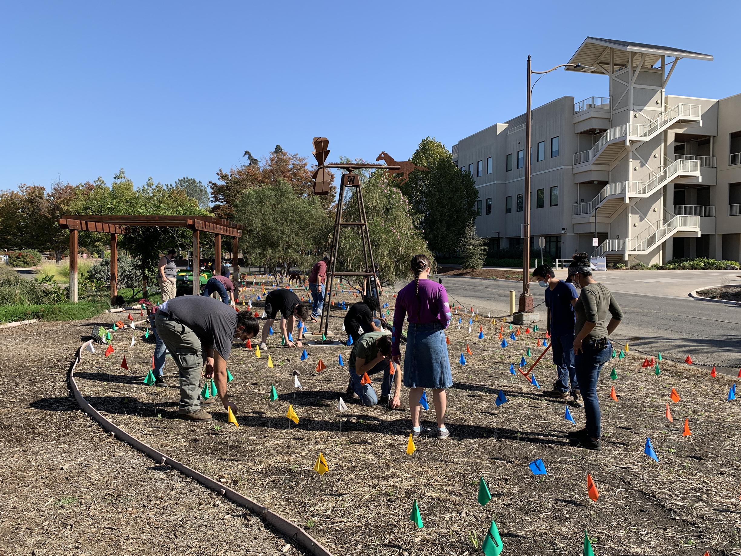 A group of students and staff plant a new garden on the campus of a community college