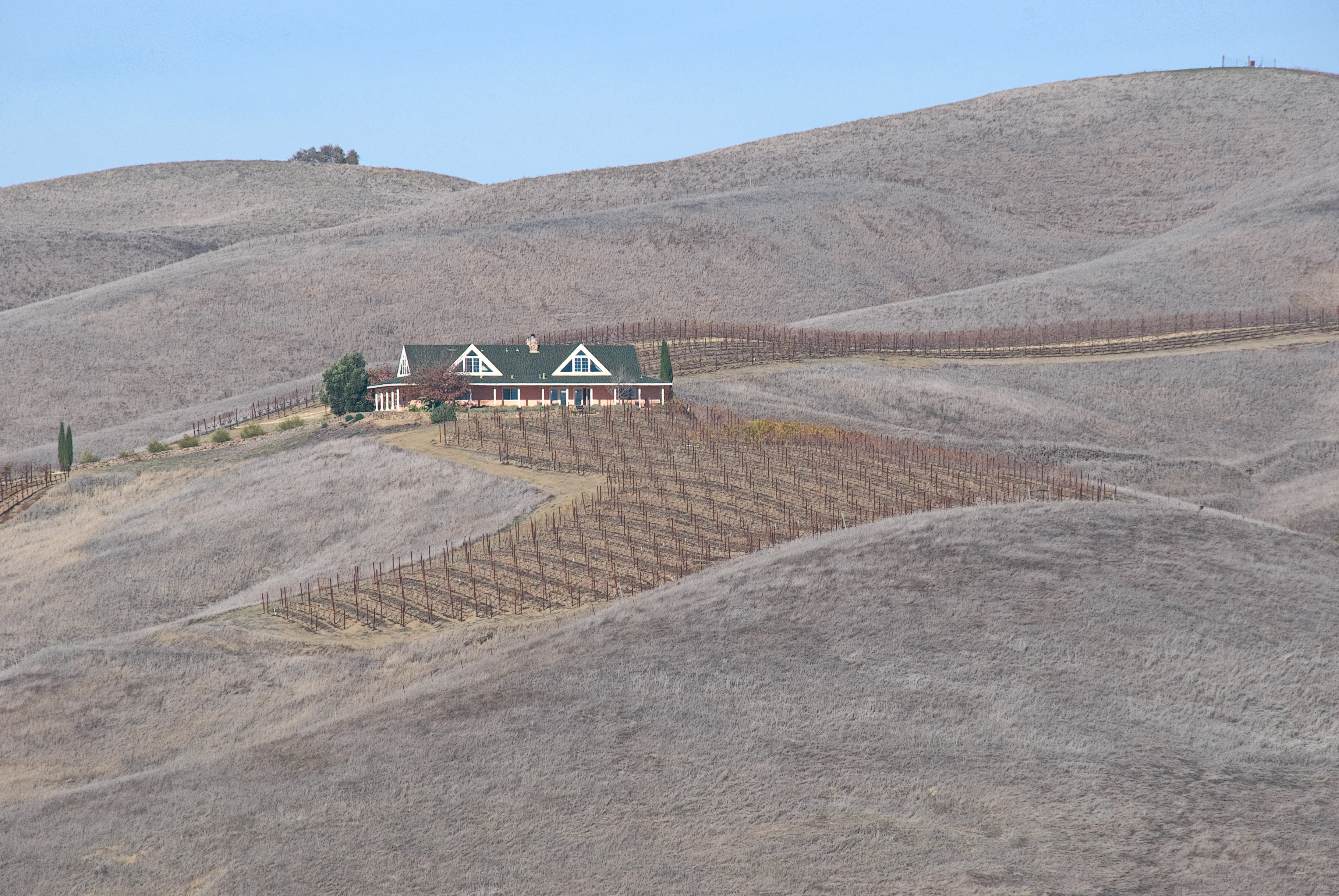 Brown hillside parched by extended drought conditions in California