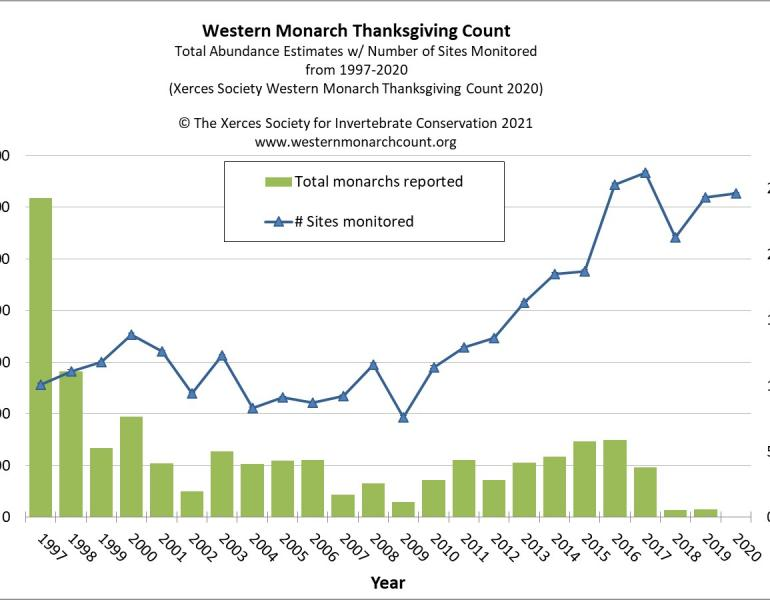 """Western Monarch Thanksgiving Count Data 1997-2020 shows that despite a strong volunteer effort, monarch numbers are at the lowest point recorded since the count started in 1997"""