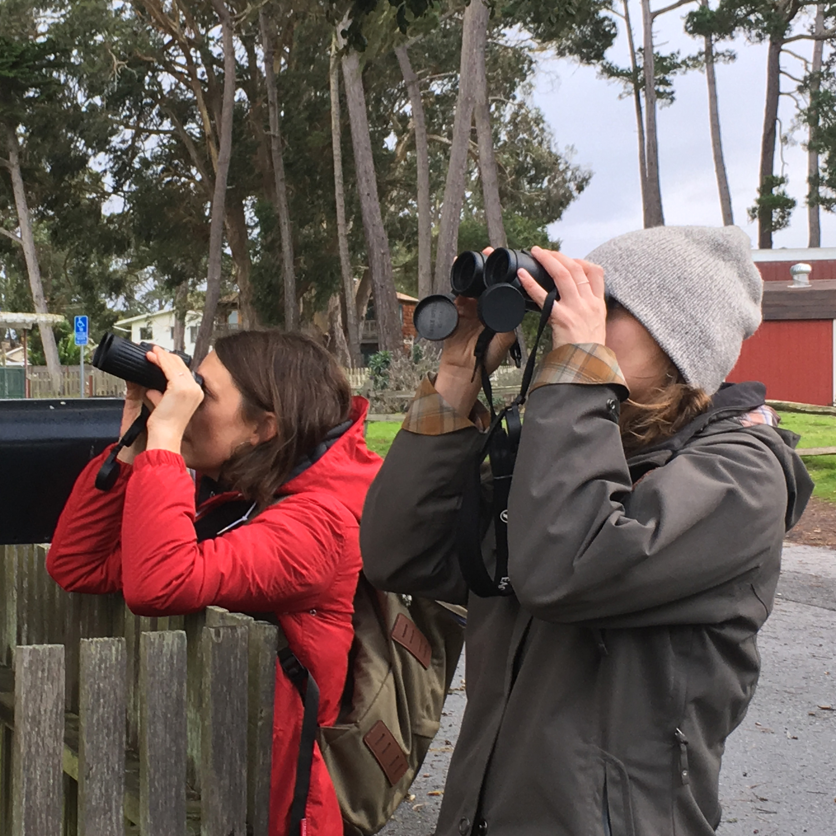 Two women wearing coats, one with a knit hat, are looking through binoculars at monarchs (outside the frame).