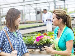 Bee-Safe Nursery Plants