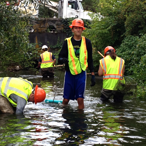 People wearing hard hats and bright yellow-green reflective vests stand in a stream.
