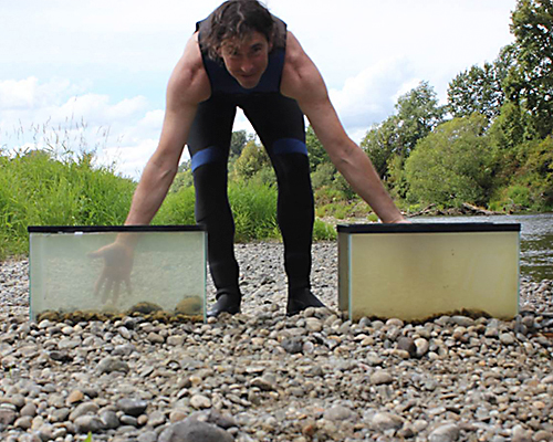 A man leans over two tanks of water: one that has had mussels in it for a while, and therefore has clear water, and one that is cloudy and brownish.