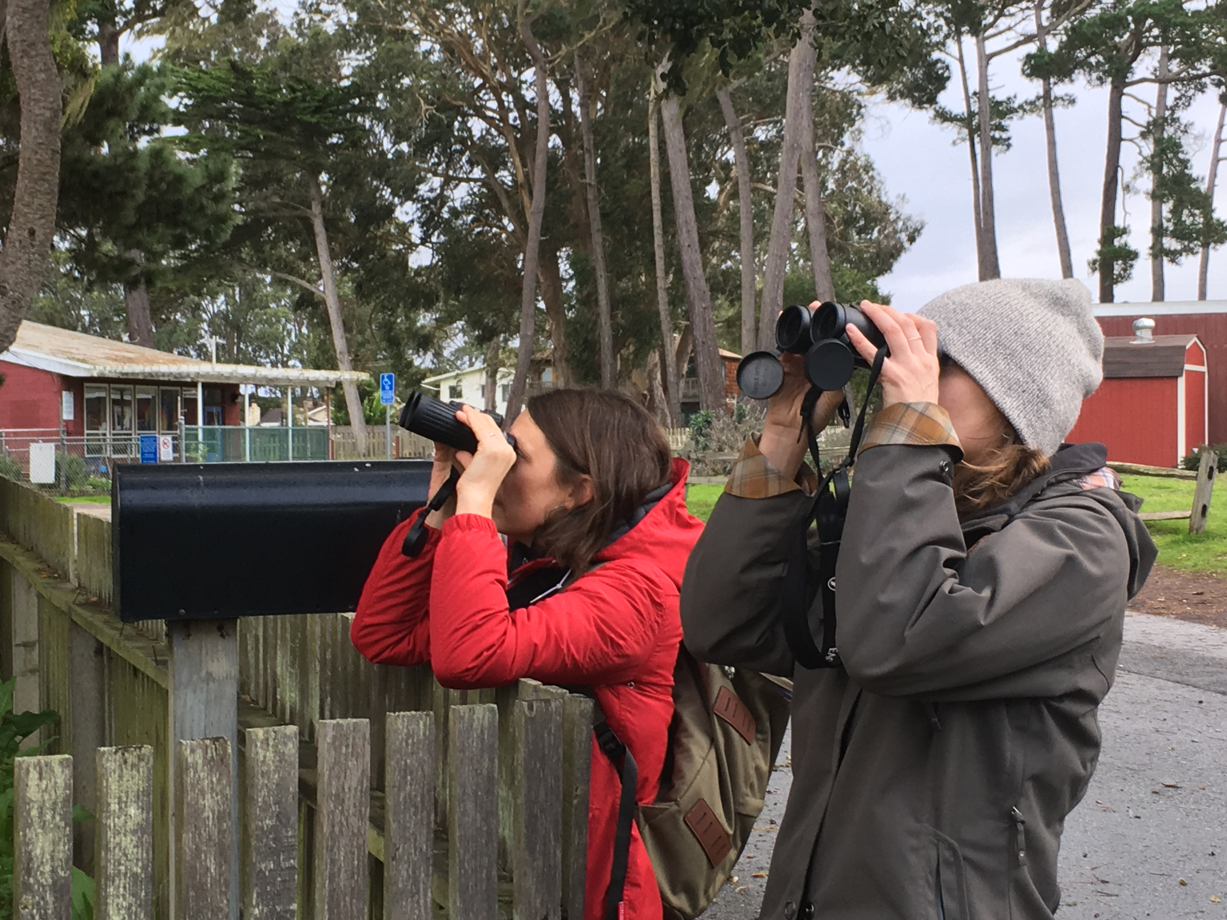 Two women in coats with warm hats peer through binoculars, while leaning on a short wooden fence.