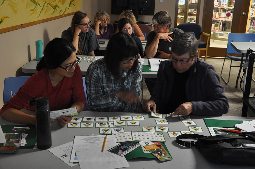 In groups of three, people sit at tables and review images of different bumble bees.