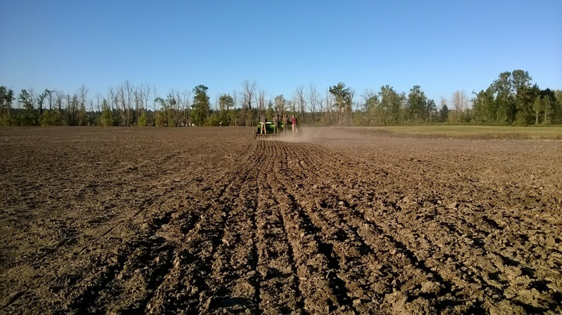 Full steam ahead! With everything working again, the seed drilling was successfully completed. There's rain in the forecast for the next few days, so the seed should have good conditions for germination.
