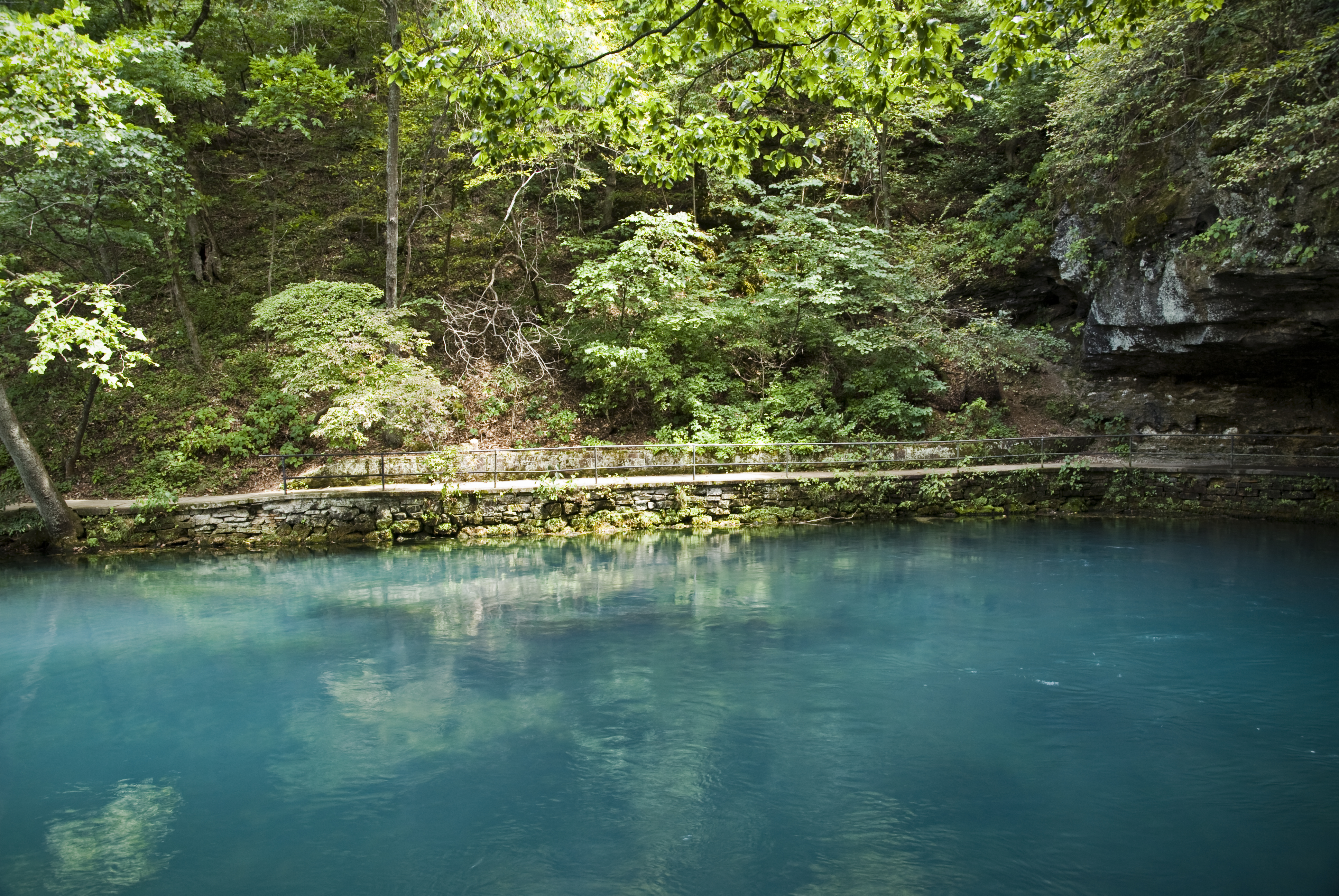 A still pool of turquoise water and overhanging, verdant branches create a placid and inviting riverside scene.
