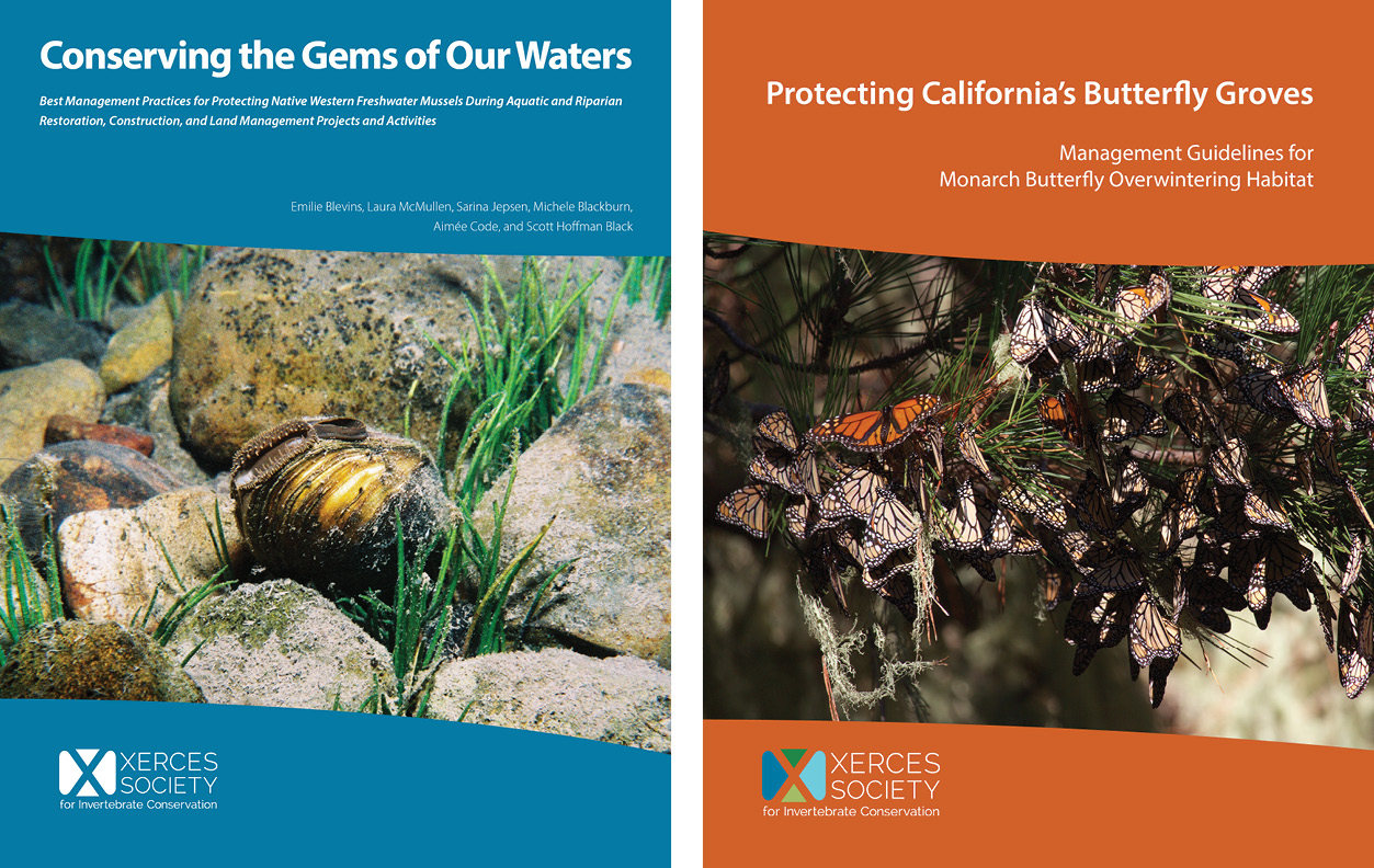 Covers shown side by side: Conserving the Gems of Our Waters and Protecting California's Butterfly Groves.
