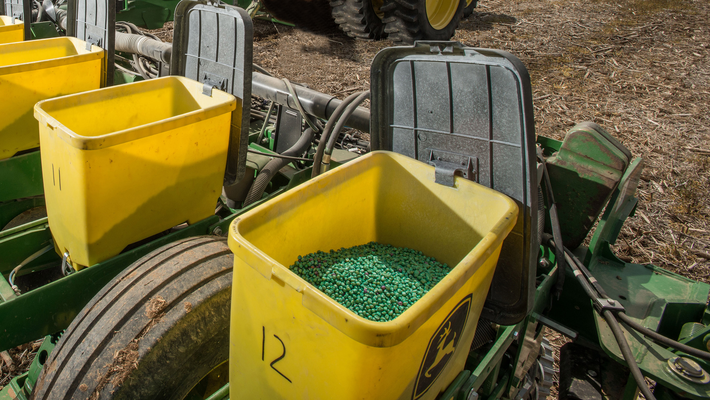 Seed corn, bright green because of a coating of pesticides, loaded into yellow hoppers of a seed drill