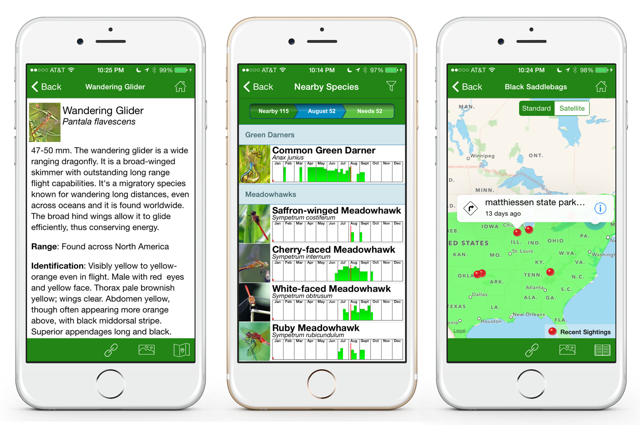 Three aspects of the dragonfly app are shown in three parallel screenshots.
