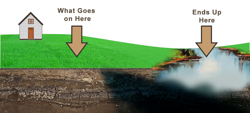 This graphic has arrows showing the flow of runoff from a lawn into a nearby body of water.