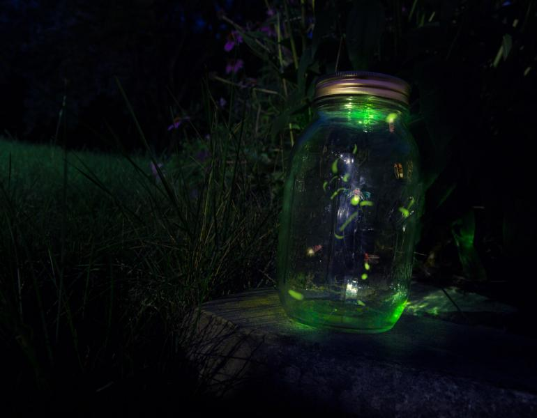 A glowing green mason jar contains a few fireflies.