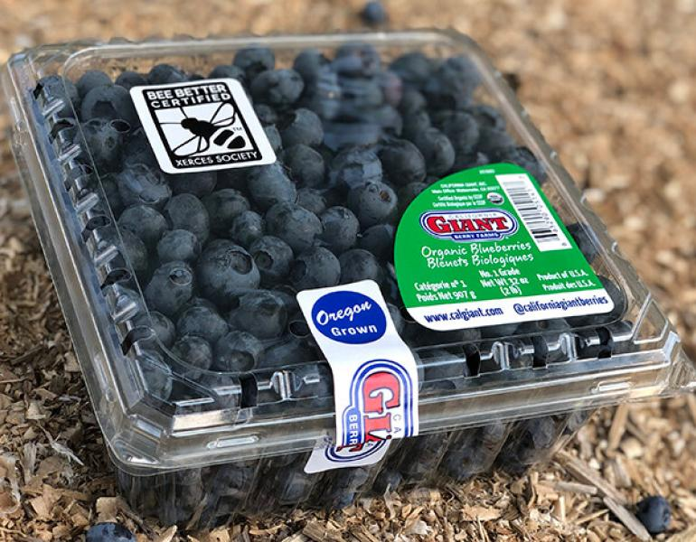 "A plastic clamshell of blueberries bears the Bee Better Certified seal, as well as a label that says ""Oregon grown"" and the California Giant label."
