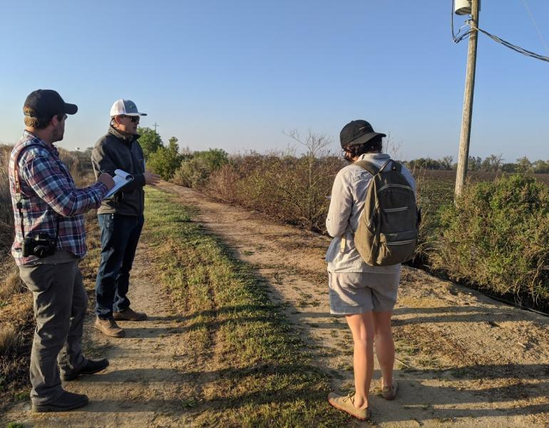 Three people, with clipboards in hand, inspect a hedgerow of young shrubs growing beside a dusty farm track.