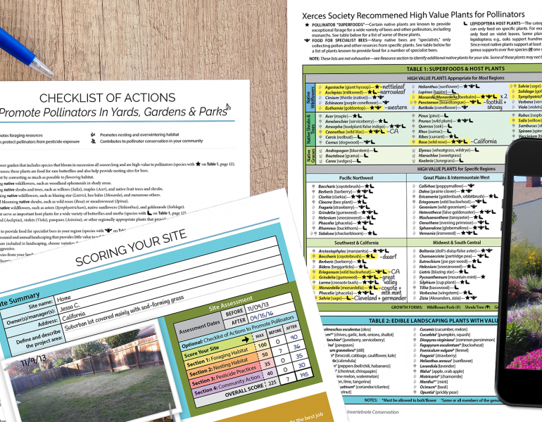 This graphic depicts a Checklist of Actions to Promote Pollinators in Yards, Gardens, and Parks; a score sheet for your site; a plant list; and a phone displaying a photo of some flowering habitat in front of a small house.